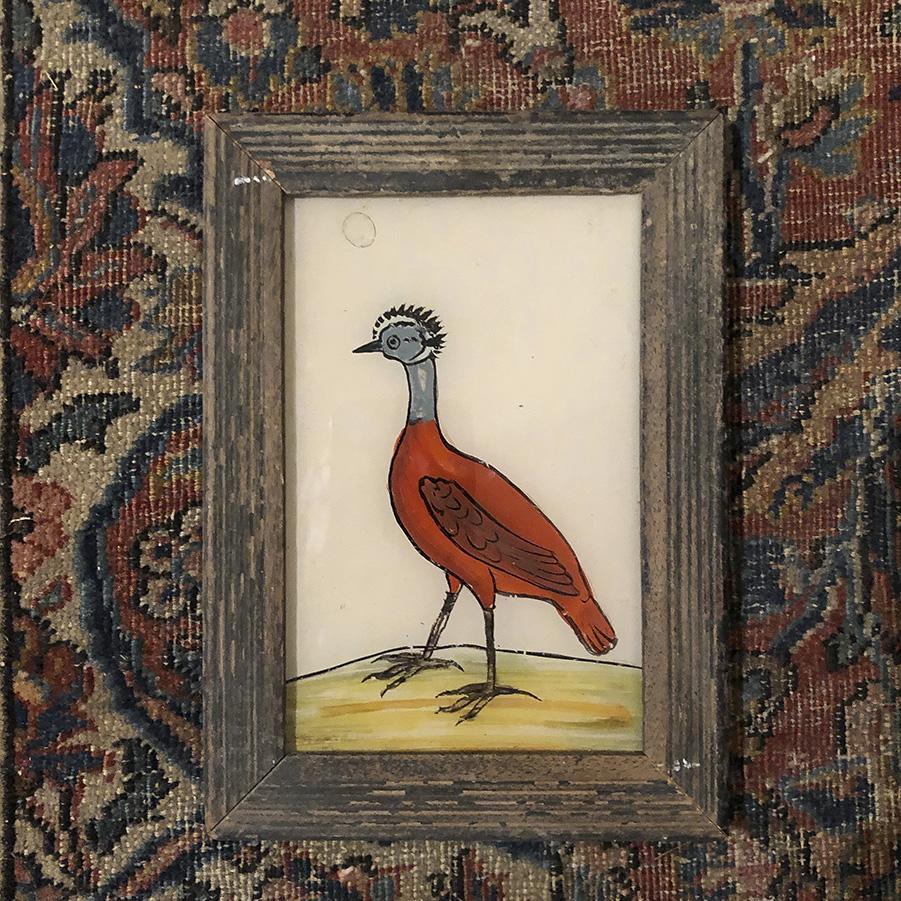 Strange Bird Thick Brown Frame-S