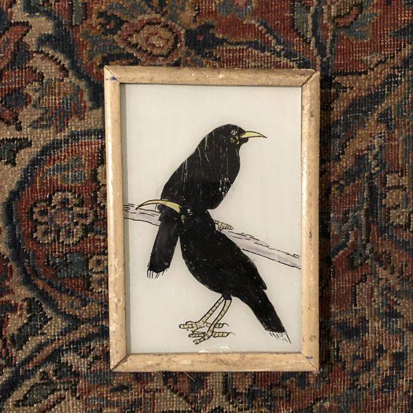 Blackbirds_S