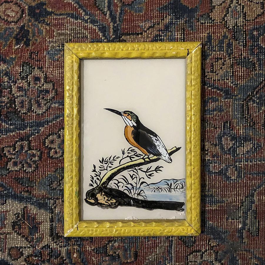 Kingfisher Yellow Frame-S
