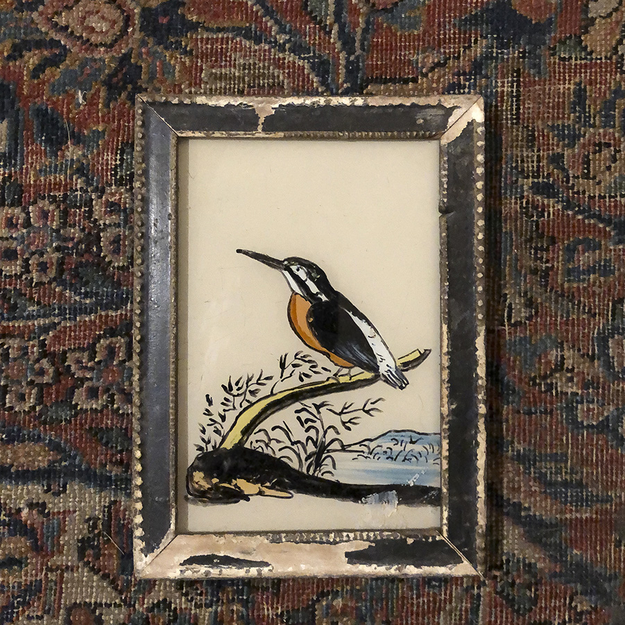 Kingfisher Distressed Frame-S