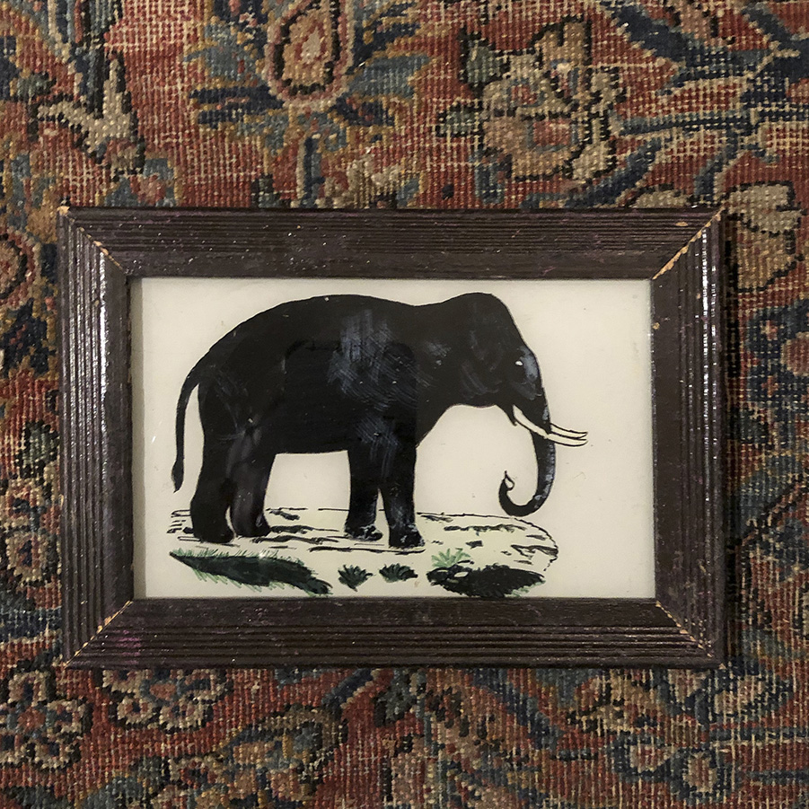 Elephant Brown Frame-S