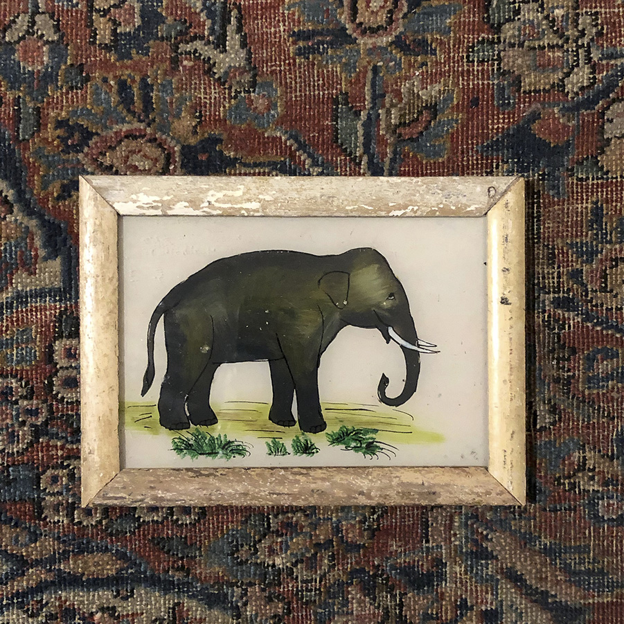 Elephant Cream Frame-S