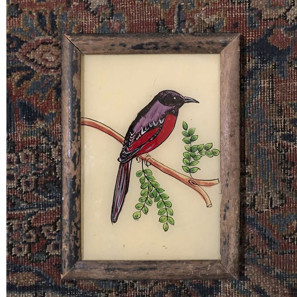 Purple Bird-S