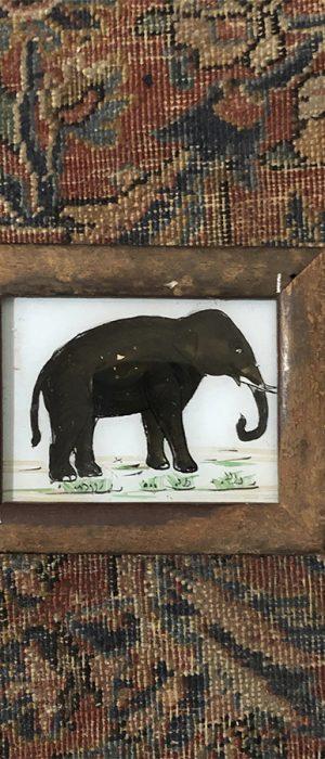 Elephant – XS